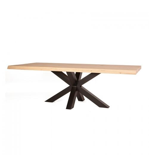 Boomstam tafel met spinpoot - 200x100 11280