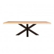 Boomstam tafel met spinpoot - 240x100 11281